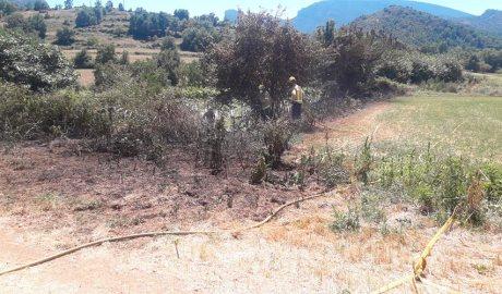 Dos bombers treballen en l'extinció d'un incendi de vegetació a Coll de Nargó