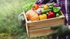 Un pagès amb una caixa de verdura ecològica