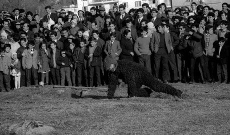 Fotografia històrica del Ball de l'ossa d'Encamp