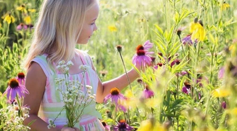 Nena recollint flors a la natura