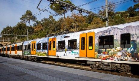 Un vagó de tren amb imatges de l'Alt Urgell
