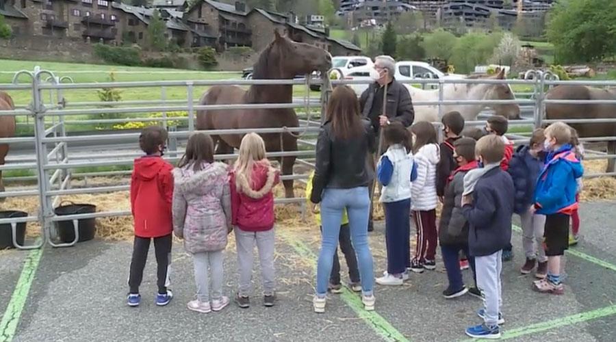 Un grup d'escolars a la Fira del Bestiar d'Ordino