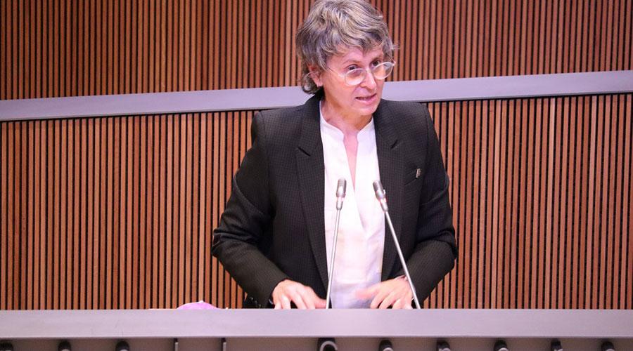 Susanna Vela a la tribuna d'oradors del Consell General