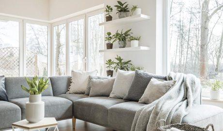 Casa amb plantes