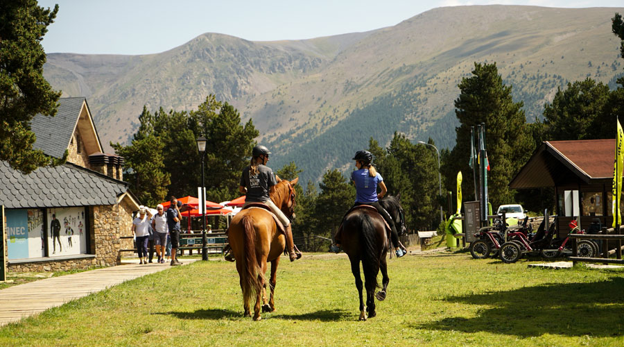 Dos cavalls a Naturland
