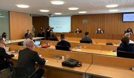 Compareixença de Sílvia Calvó i Albert Moles al Consell General