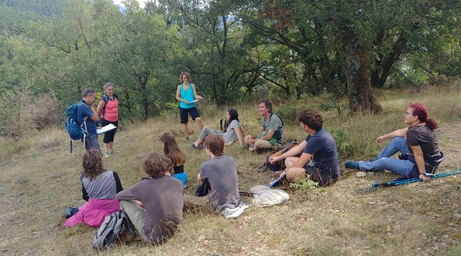 Participants en un BioBlitz a la Seu d'Urgell