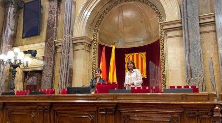 Suñé i Borràs a la sala de plens del Parlament de Catalunya