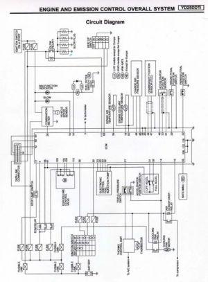 Nissan Terrano Wiring Diagram  Somurich