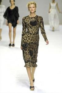 Dolce & Gabbana (22)