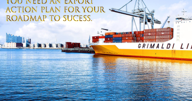 Export action plan, The roadmap to your success