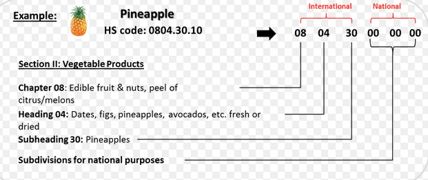 Example of a HS code breakdown for Pineapples.