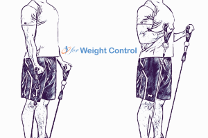 forweightcontrol biceps curl - For Weight Control
