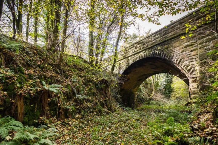 Old railway bridge at risk