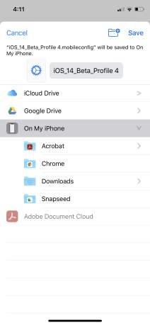 Сохраните файлы бета-профиля iOS