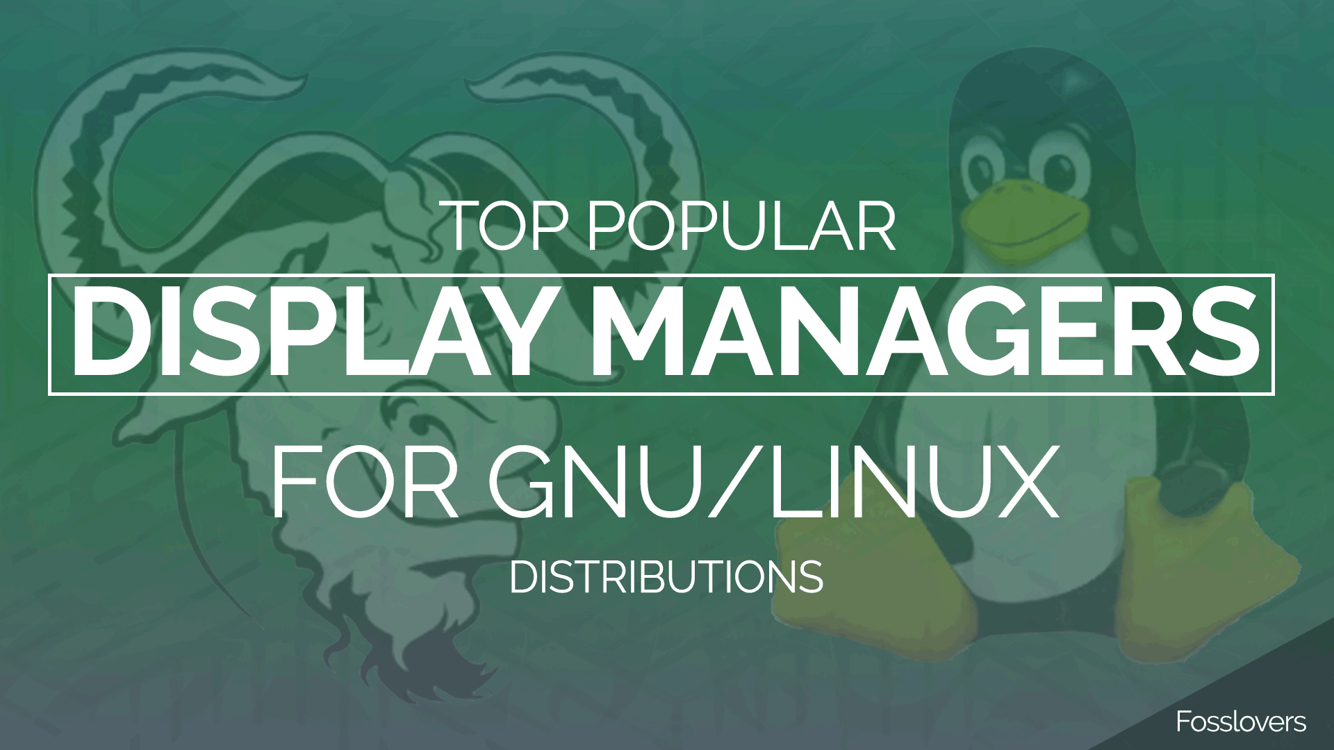 Top Popular Display managers for GNU/Linux Distributions