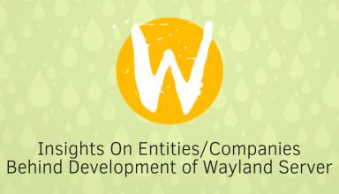 wayland 2 5
