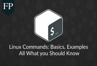Linux Command Line Basics & Examples 5 linux command line