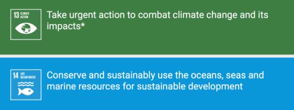 SDGs13-14