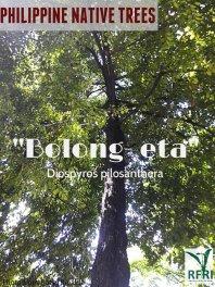 Belong-eta