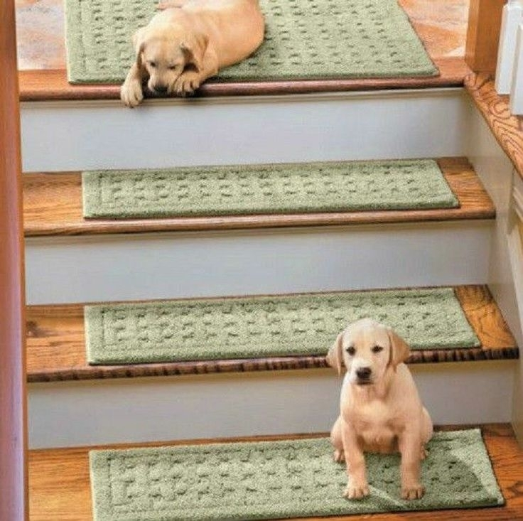 Carpet Treads For Wood Stairs Ideas On Foter | Modern Carpet Stair Treads | Beige Carpet | Wood | Basement Stairs | Grey | Modern Trellis