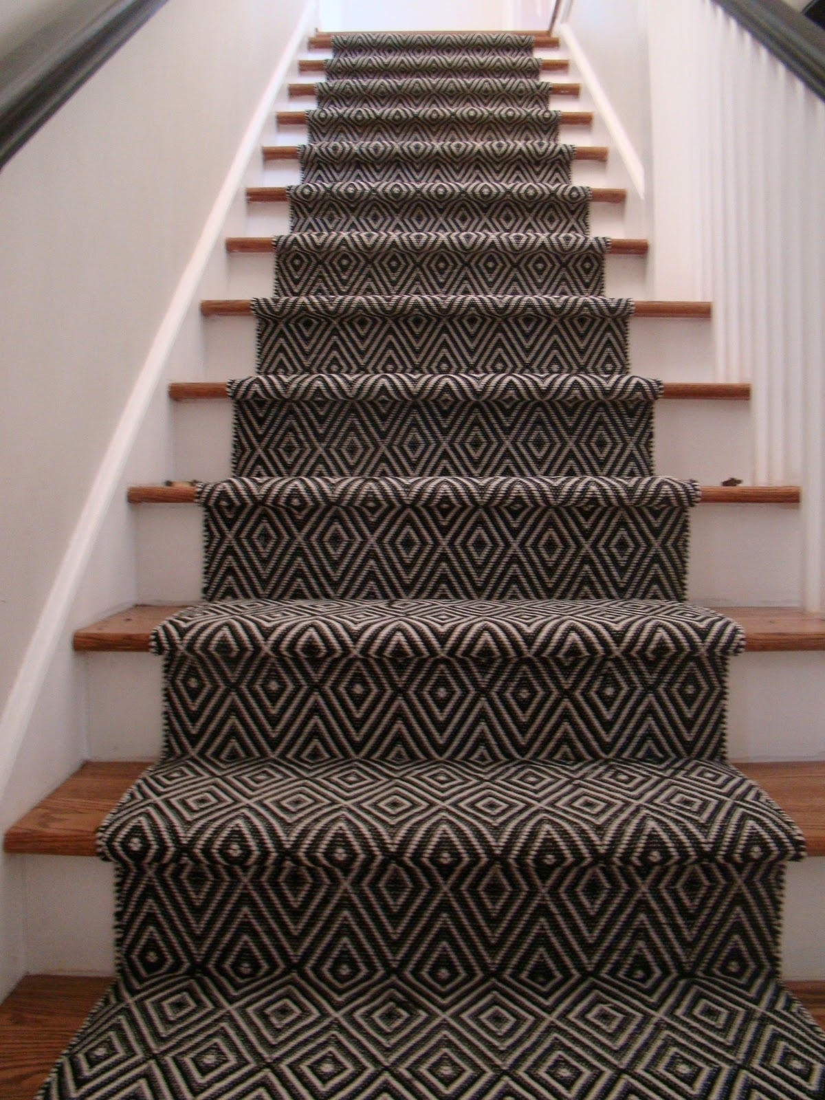 Albert And Dash Ideas On Foter   Zebra Print Stair Carpet   Staircase Remodel   Ideas   Stair Treads   Leopard Print   Carpet Runner