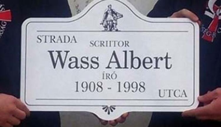 Perel a prefektus a Wass Albert utca miatt