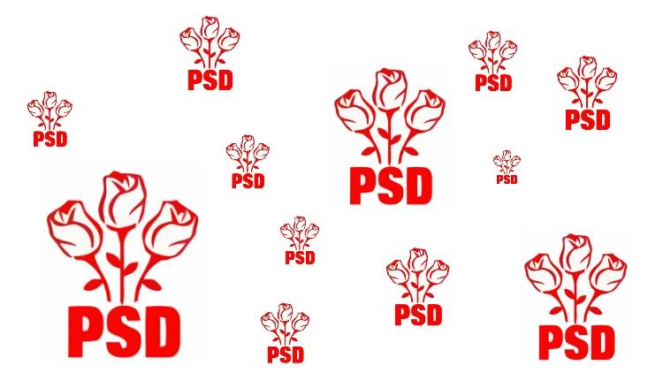 Szociáldemokrata párt a PSD?