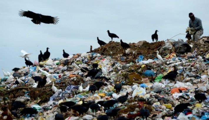 Betiltaná a műanyag zacskókat az USR