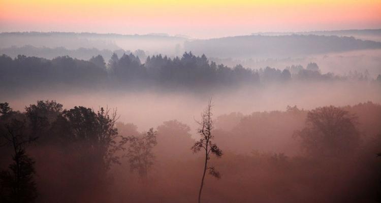 Figyelem: belső-Erdélyben köd nehezíti a forgalmat