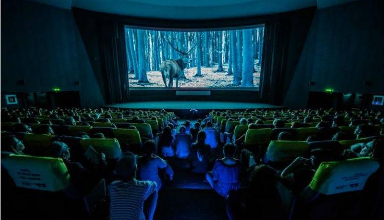 Ismét van magyar film az Oscar-jelöltek között!