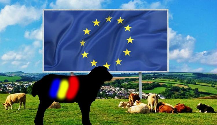 Az Európai Unió új fekete báránya