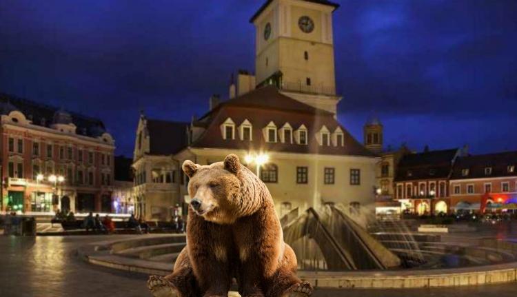 A medvék egész éjszaka bújócskáztak a csendőrökkel Brassóban