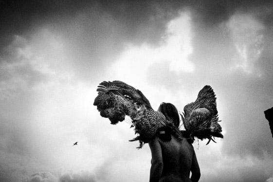 Geert Broertjes One year fototentoonstelling bij Schilt