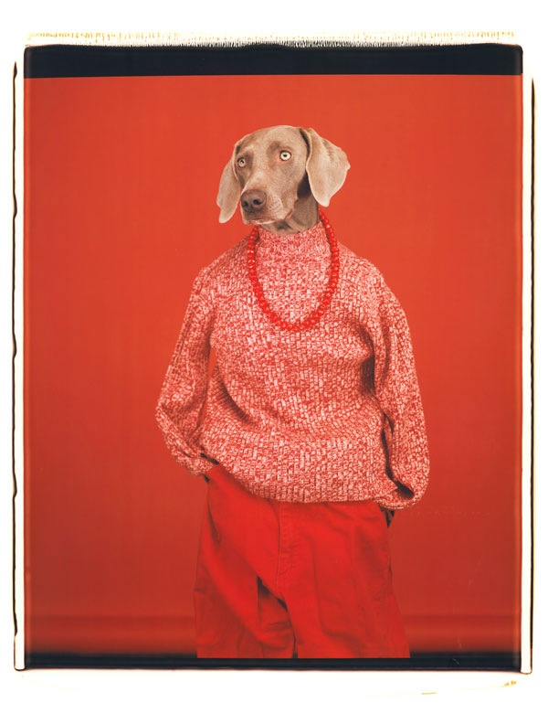 William Wegman being human fotomuseum den haag