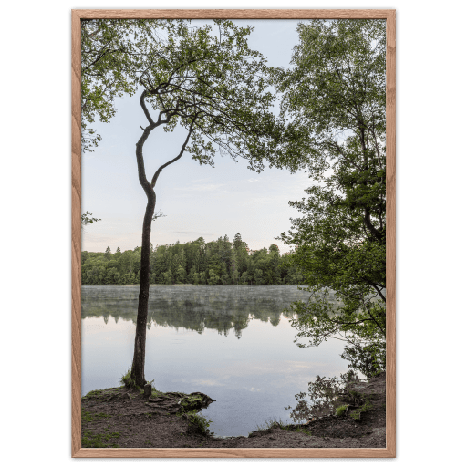 Slåensø poster Danish Lake