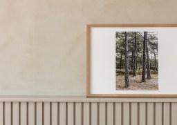 Træer fotokunst