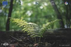 Plener-01-FOTO-Przygoda-w-Świdwinie-Wiosna-19-0387b