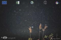 Plener-01-FOTO-Przygoda-w-Świdwinie-Wiosna-19-0544b