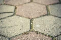 Plener-02-FOTO-Przygoda-w-Świdwinie-Wiosna-19-0607b