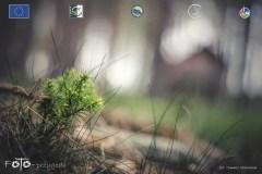 Plener-02-FOTO-Przygoda-w-Świdwinie-Wiosna-19-0714b