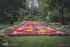 FOTO-Przygoda-w-Połczynie-Zdroju-Wiosna-19-Ewa-Kozik-016a