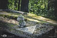 FOTO-Przygoda-w-Połczynie-Zdroju-Wiosna-19-Joanna-Gasek-140a