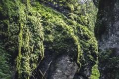 FOTO-Przygoda-w-Połczynie-Zdroju-Wiosna-19-Joanna-Gasek-164a