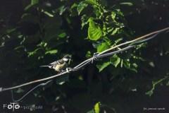 FOTO-Przygoda-w-Połczynie-Zdroju-Wiosna-19-Joanna-Gasek-193a
