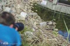 1-FOTO-Przygoda-w-Połczynie-Zdroju-Wiosna-19-0211b