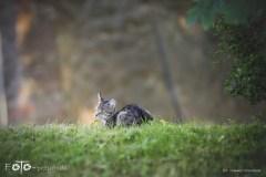 3-FOTO-Przygoda-w-Połczynie-Zdroju-Wiosna-19-0562b