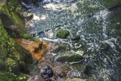 3-FOTO-Przygoda-w-Połczynie-Zdroju-Wiosna-19-0721b