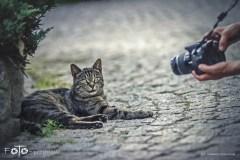 5-FOTO-Przygoda-w-Połczynie-Zdroju-Wiosna-19-1229b