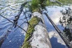 5-FOTO-Przygoda-w-Połczynie-Zdroju-Wiosna-19-1589b